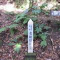 名越切通(鎌倉市)