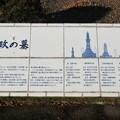善導寺(館林市)榊原康政墓
