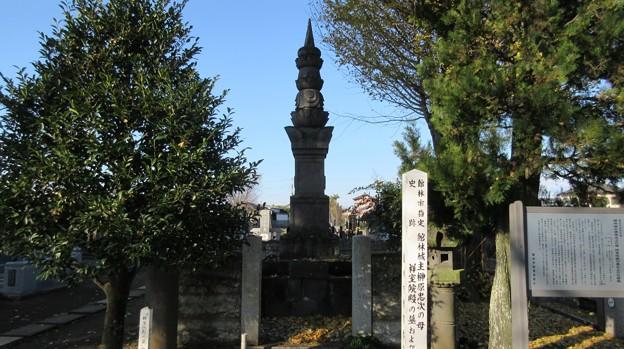 善長寺(館林市)祥室院殿墓