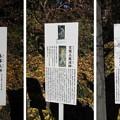 Photos: 大庵寺(佐野市)