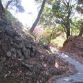 唐沢山城(佐野市)三の丸石垣