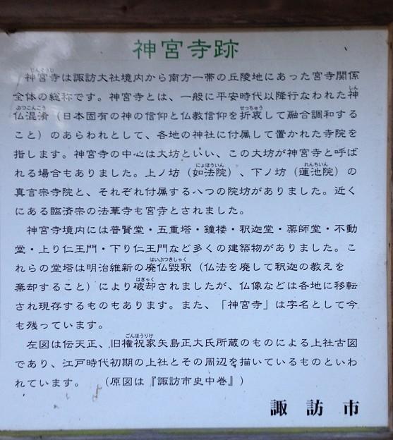 Photos: 法華寺/上社神宮寺跡(諏訪市)