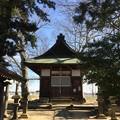 天神島城(一色氏館。幸手市)天神社