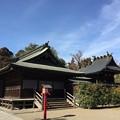 鷲宮神社(久喜市)拝殿・本殿