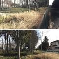 花崎城(花崎遺跡。加須市営花崎城山公園)