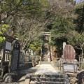 Photos: 法華堂跡・源頼朝墓(鎌倉市)
