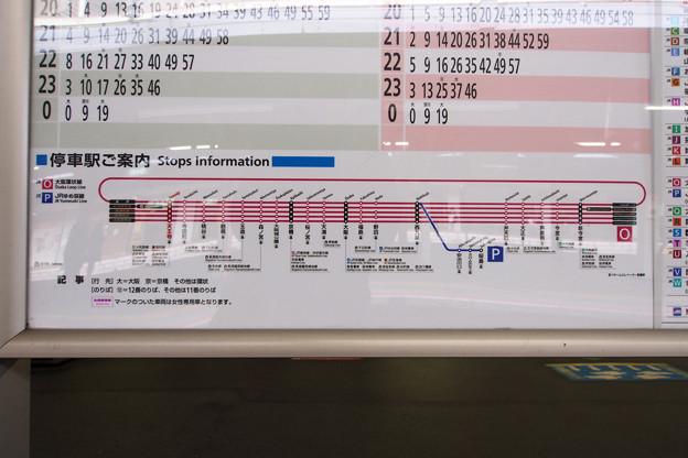 P3145741-e01