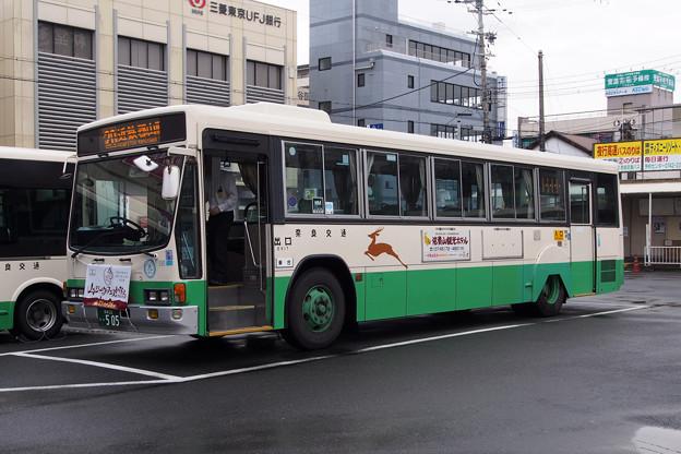 P6197629-e01