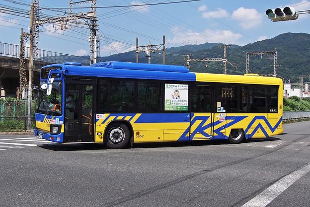 P7188216-e01