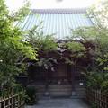 護念山證誠寺 本堂