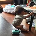 Photos: 姪っ子の6ヶ月の子