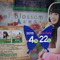 Photos: 水樹奈々 32ndシングル『Angel Blossom』 とらのあな