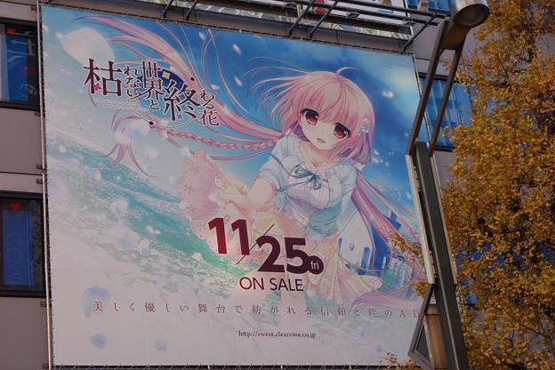 秋葉原 ソフマップ 枯れない世界と終わる花 大型広告