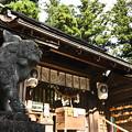 写真: 洲原神社の拝殿と狛犬