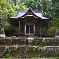 写真: 平泉寺白山神社の本殿