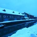 写真: 小樽 冬