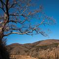 写真: 冬晴れの宝篋山