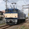 JR東日本 EF64 36 2007.3.5