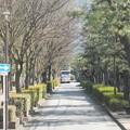 Photos: この世界の片隅に 呉市 聖地巡礼