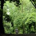 Photos: 森へ帰ろう~♪