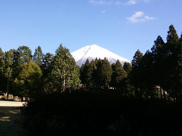 Photos: ゴルフ場からの富士山。