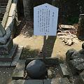 田島神社(6)