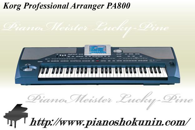 Korg Professional Arranger PA800 2