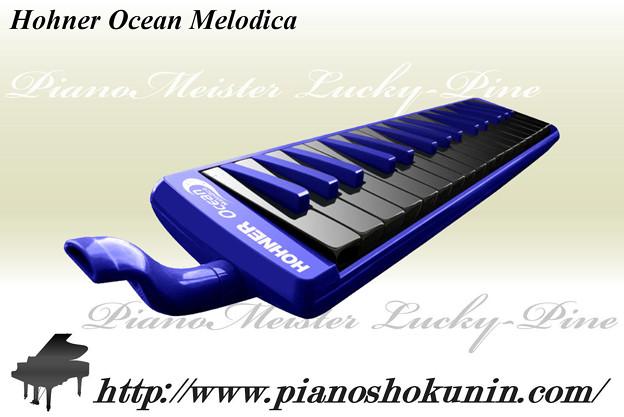 Hohner Ocean Melodica