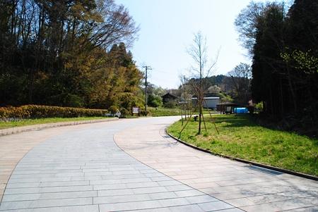 miharutakizakura1