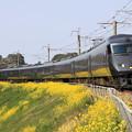 特急列車とコラボ