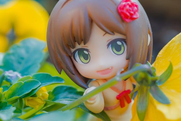 お花にゃ!