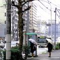 写真: ~バス停と電話ボックスのある風景~