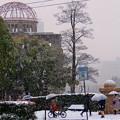 写真: ~2017年1/15~1/16の積雪(記録画)