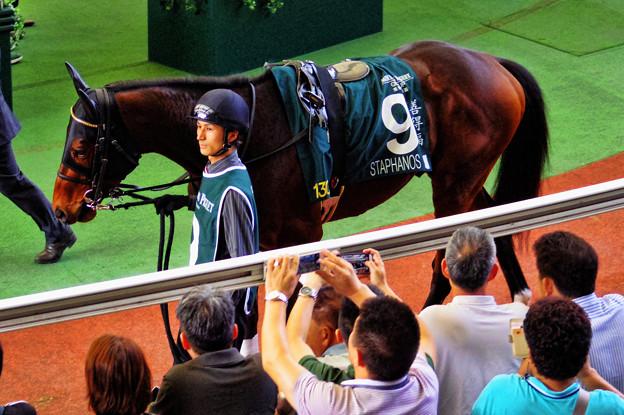 2015香港QE2