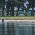 湖の北に走る