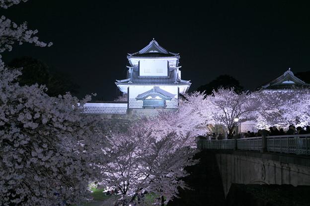 石川門と満開の桜