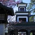 尾山神社 神門 梅