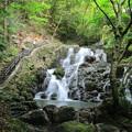 Photos: 七つ滝(2)