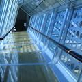 Photos: 能登島ガラス美術館 廊下  (ガラスのブリッジ)