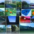 夏の金沢21世紀美術館(2)