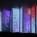 アートアクリウム「金魚の密」花鳥風月で12ヶ月と四季(金沢21世紀美術館)
