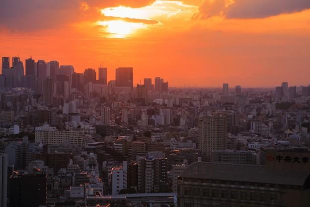 夕陽 文京区役所から (1)