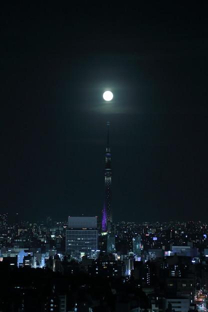スカイツリーと満月(1)