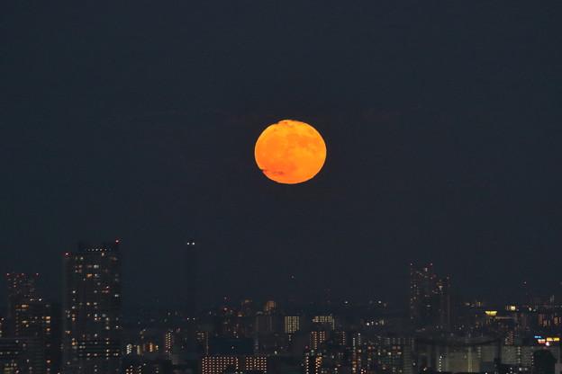 雲の中から満月が昇る(合成ではありません)