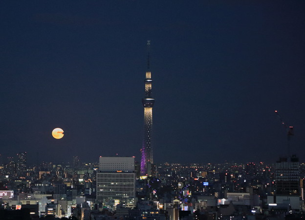 スカイツリーと満月(2)