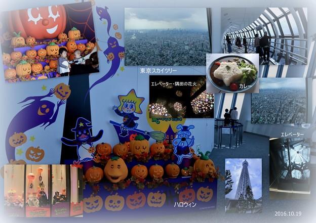 Photos: 東京スカイツリー ハロウィン