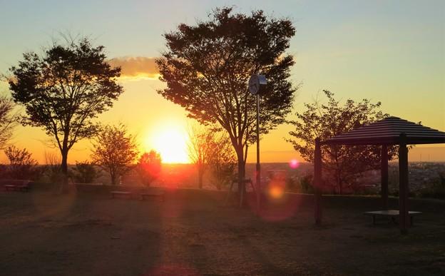 夕陽(3)