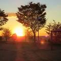 写真: 夕陽(3)