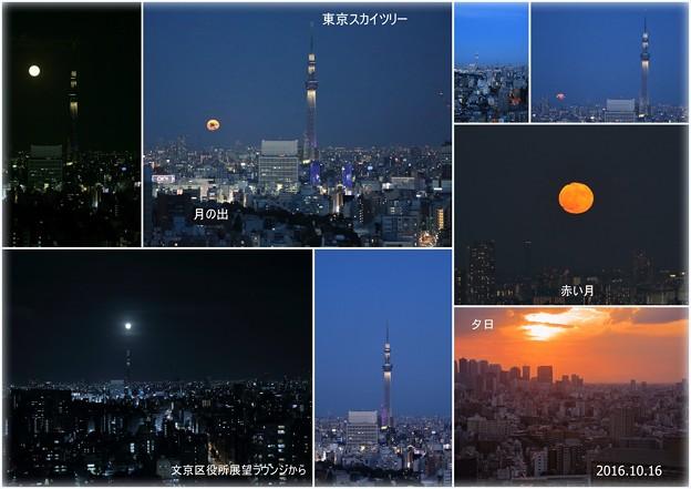 文京区展望ラウンジから スカイツリーと満月の月の出