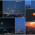 写真: 文京区展望ラウンジから スカイツリーと満月の月の出